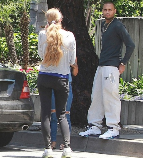Chris Brown Hit and Run
